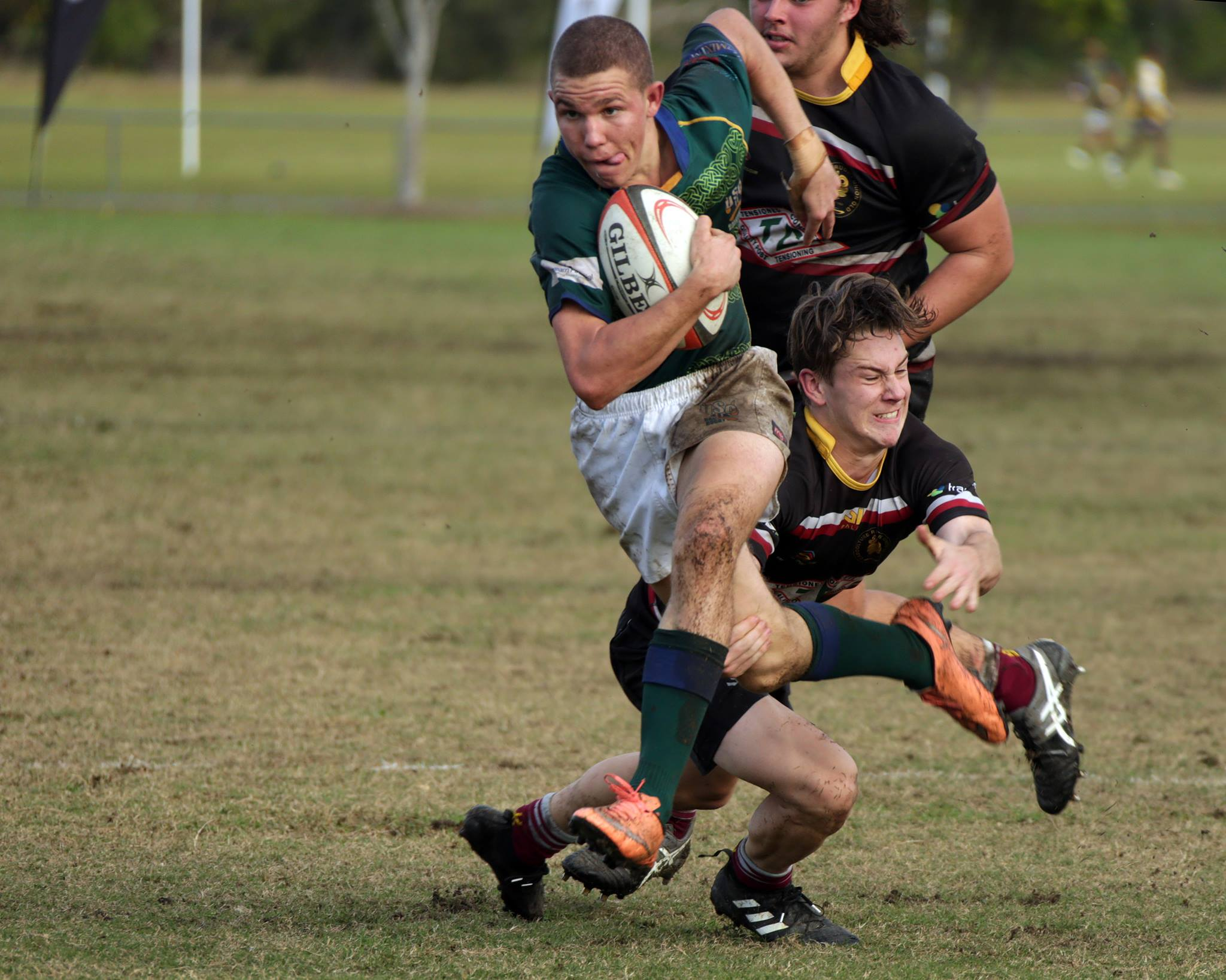 Colts rugby age 18 Sunshine Coast